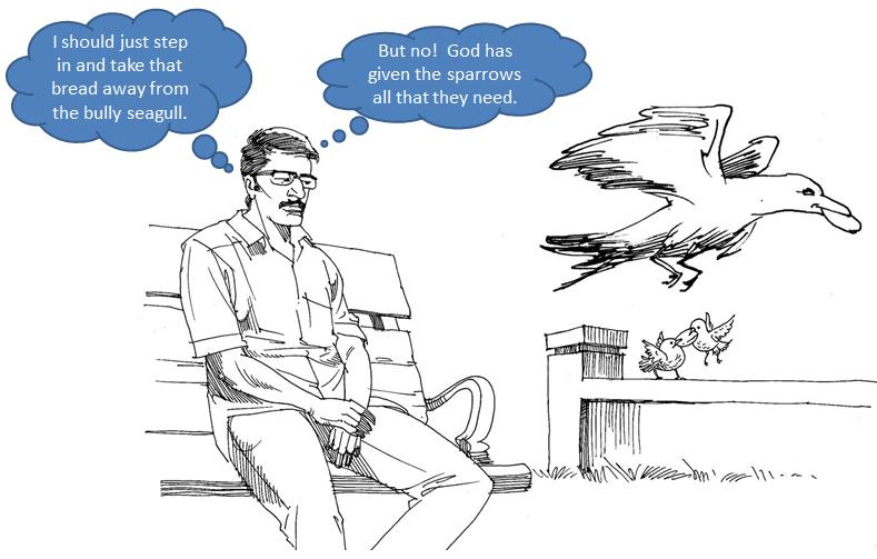 God Speaks Through Animals | cfcindia, Bangalore